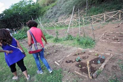 Torna verde il Parco della Caffarella