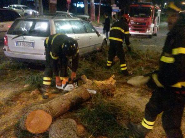 Vigili del fuoco impegnati con il tronco del pino
