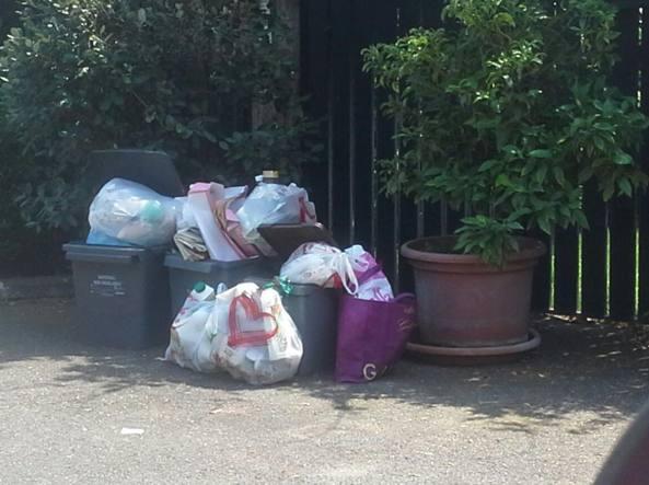 I cestelli pieni a Casalpalocco (foto dei residenti)
