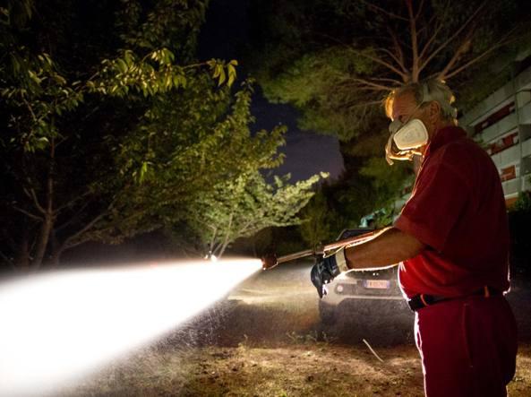 Disinfestazione contro la zanzara tigre portatrice di Chikungunya (LaPresse)